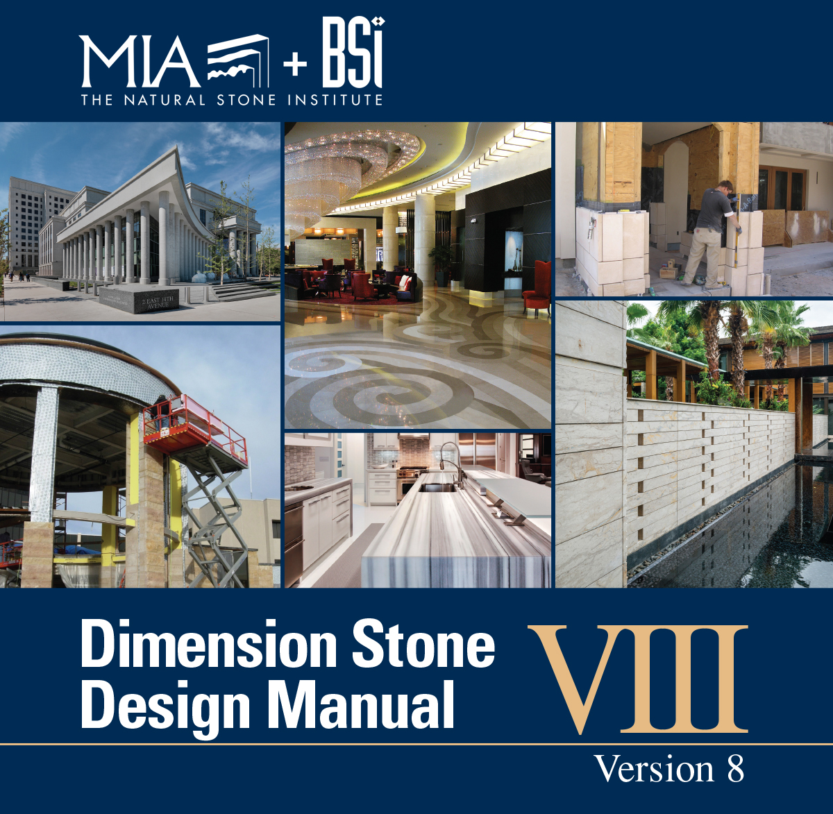 DSDM-8-MIA_BSI-newest-cover.jpg